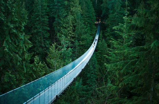 Capilano Suspension Bridge-British Columbia