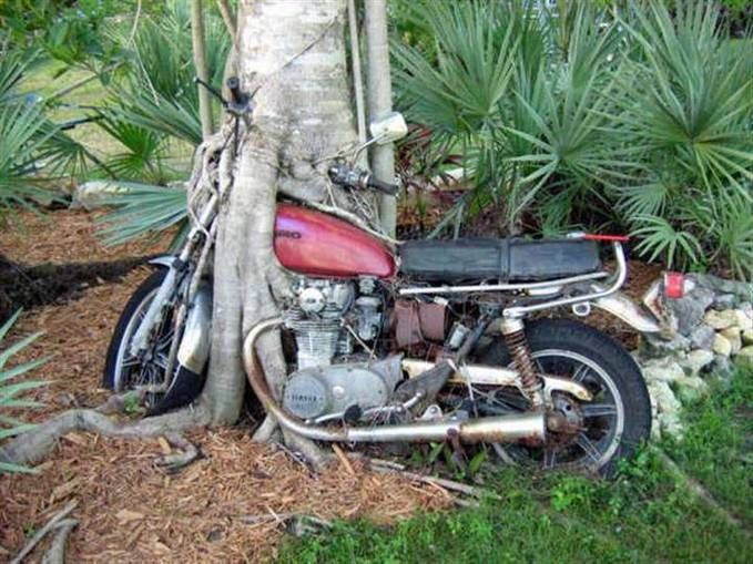 Sudah berapa lamakah kira-kira motor ini parkir,jgn lupa wow nya