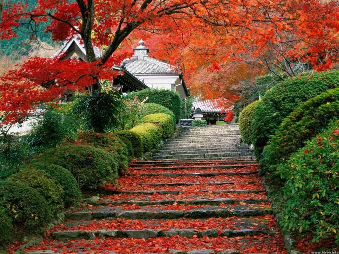 Beautiful land , Japan