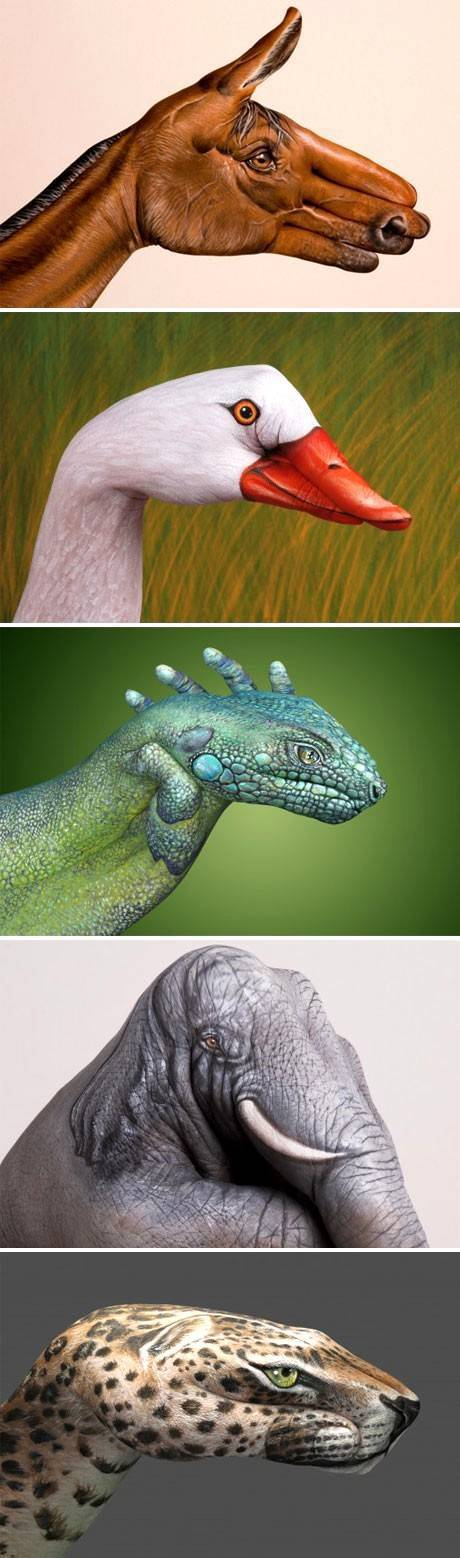 Animal Hand Painting