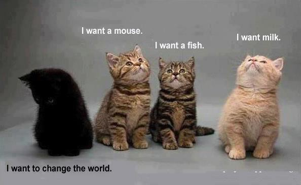 I want to change the world