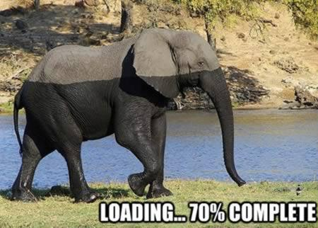 Loading... 70% complete