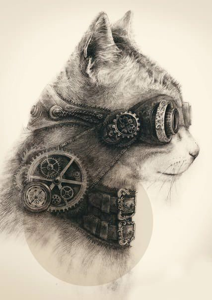 streampunk cat (more wow)> watching tv> http://pulsk.com/211078