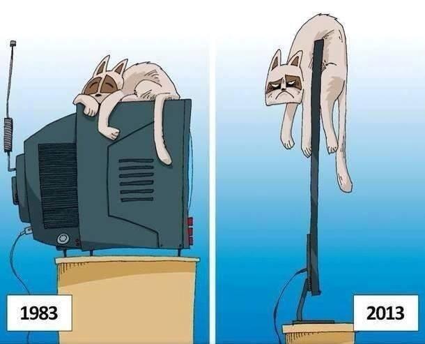 perbedaan tahun 1983 dengan 2013...