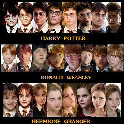 Verwandlung Harry Potter