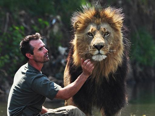 Lion Whisperer : Anda tahu siapa Kevin Richardson? http://goo.gl/wE580Z