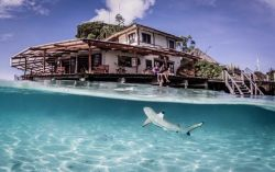 Bukan di Luar Negeri, 9 Hotel dengan Konsep Unik Bak Negeri Dongeng Ini Ternyata Ada di Indonesia Lho