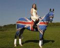 Ketika Tubuh Kuda Dijadikan Media Lukis, Keren Tapi Kasihan Juga Sih Ngeliatnya