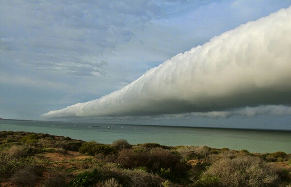 Awan Roll Sesuai namanya awan ini berbentuk tabung. Fenomena awan ini terjadi di daerah pantai dan terjadi karena adanya pertemuan angin dingin darat dan angin laut.Kalau lihat yang seperti ini mungkin kita akan kuatir akannterjadi sesuatu.